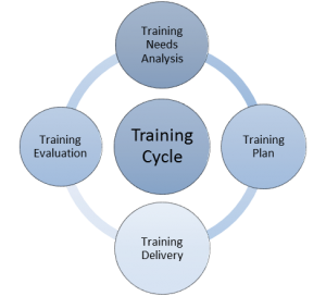 Training Cycle